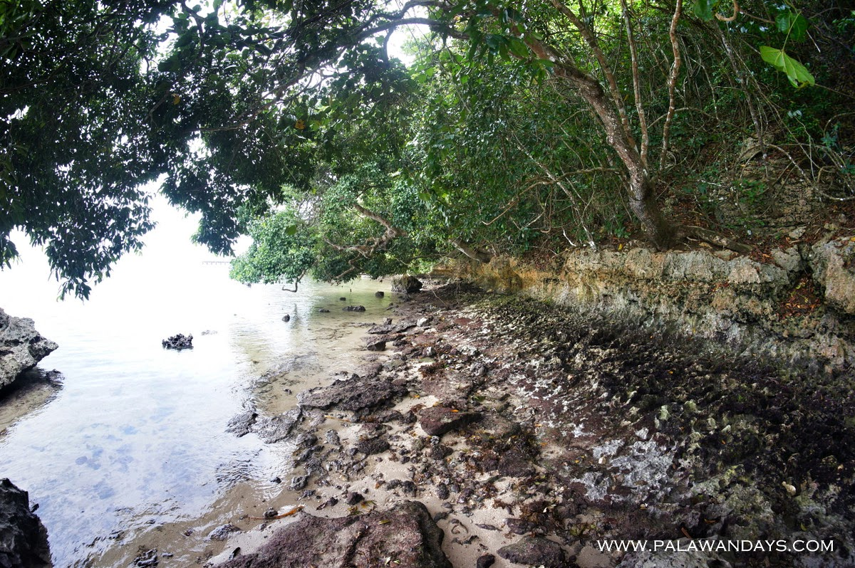 Tabon Cave palawan (59)