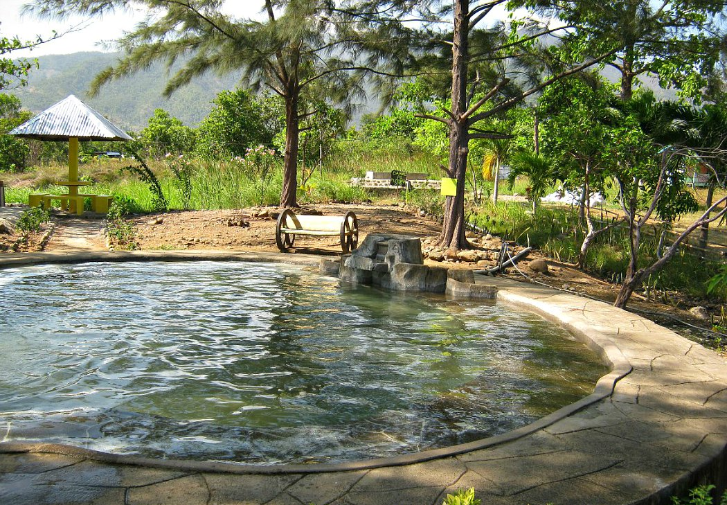 hot spring narra