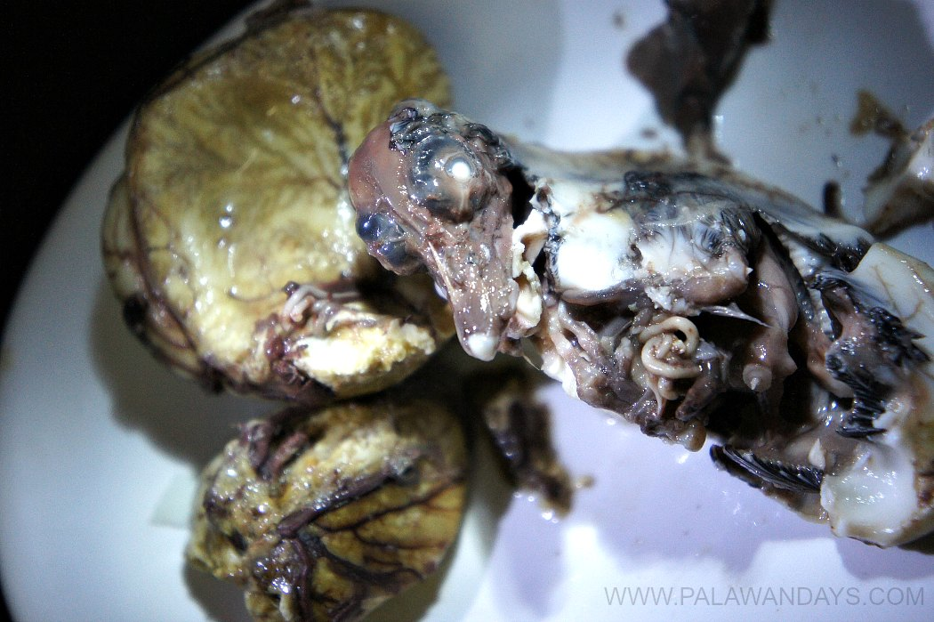 balut philippines