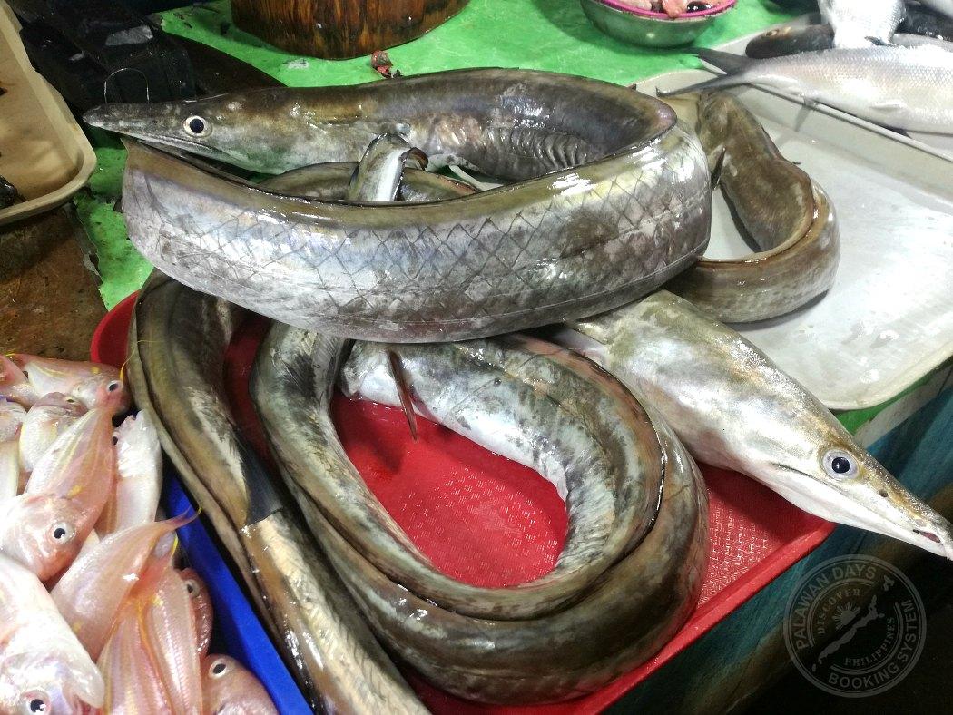 Eel public market puerto princesa